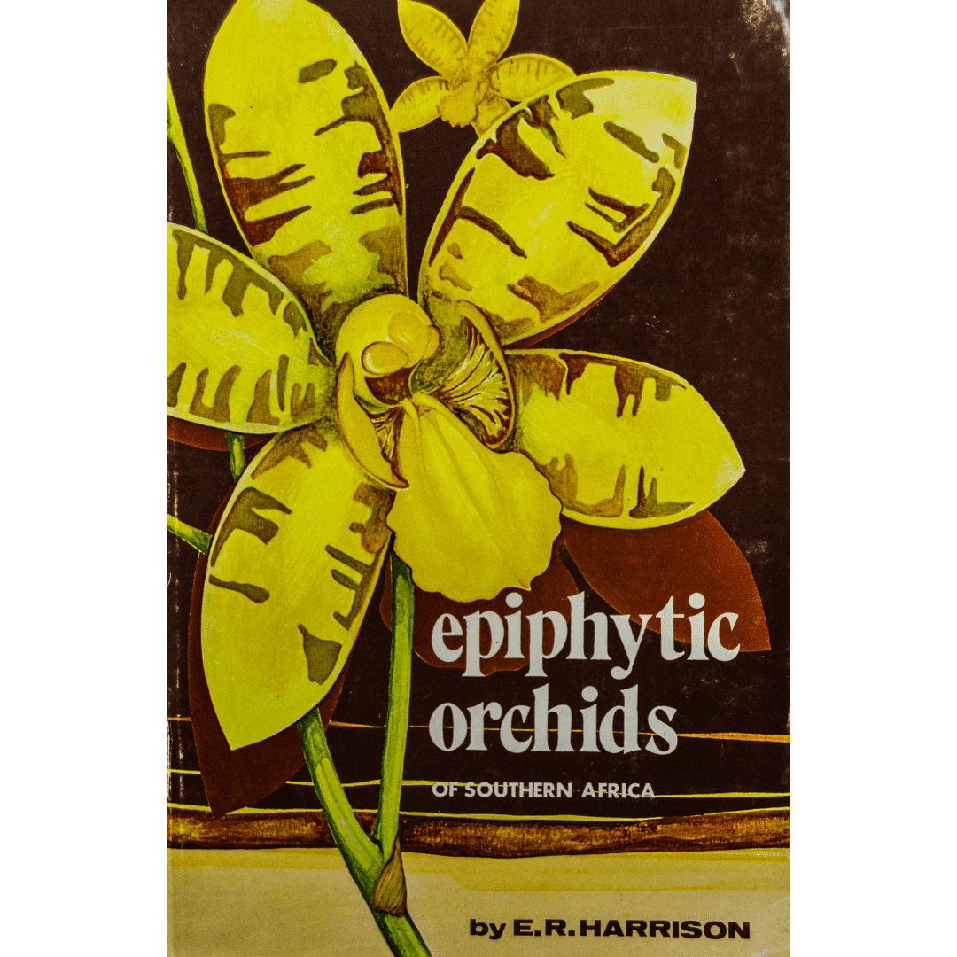 Epyphitic orchids of southern africa