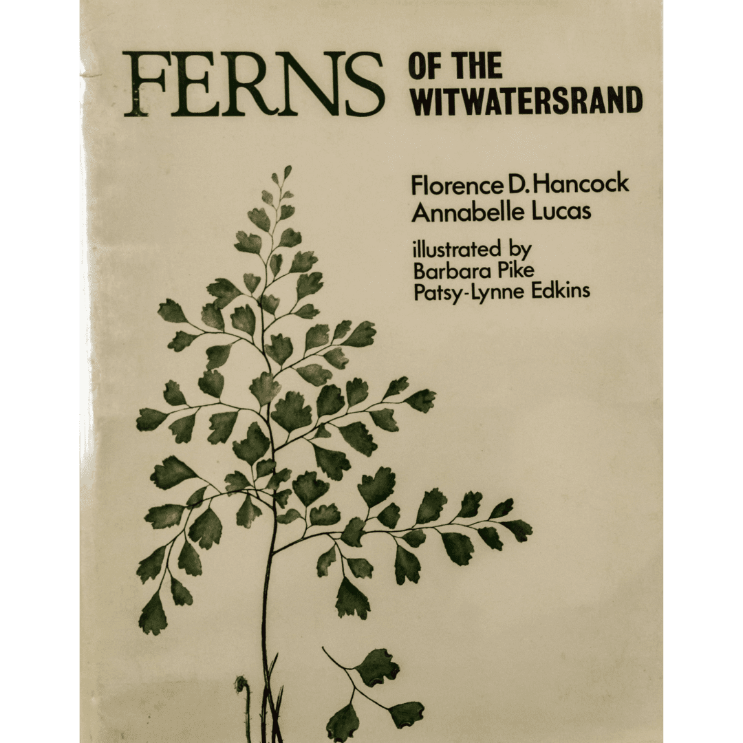Ferns of the Witwatersrand