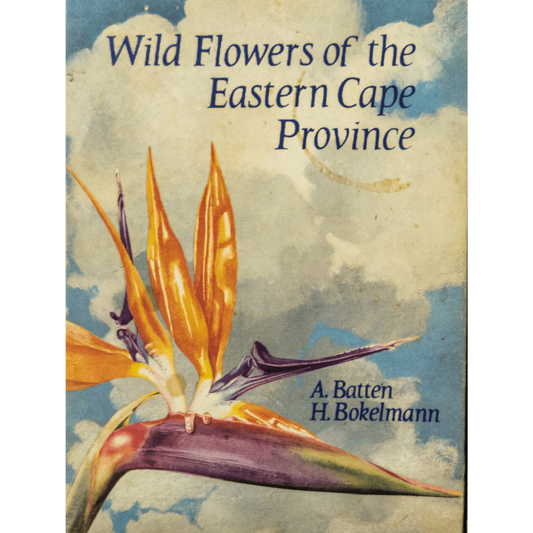 Wild flowers of the easter cape f