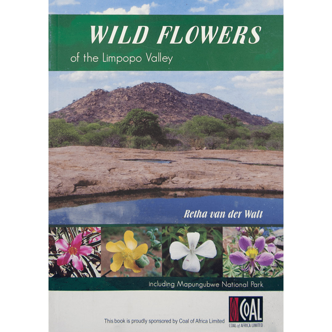 Wild flowers of the limpopo valley