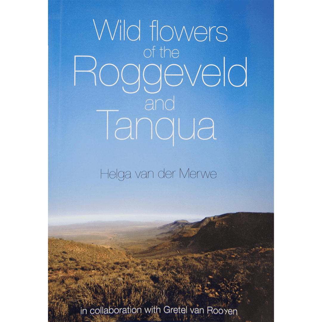 wild flowers of the roggeveld and tanqua