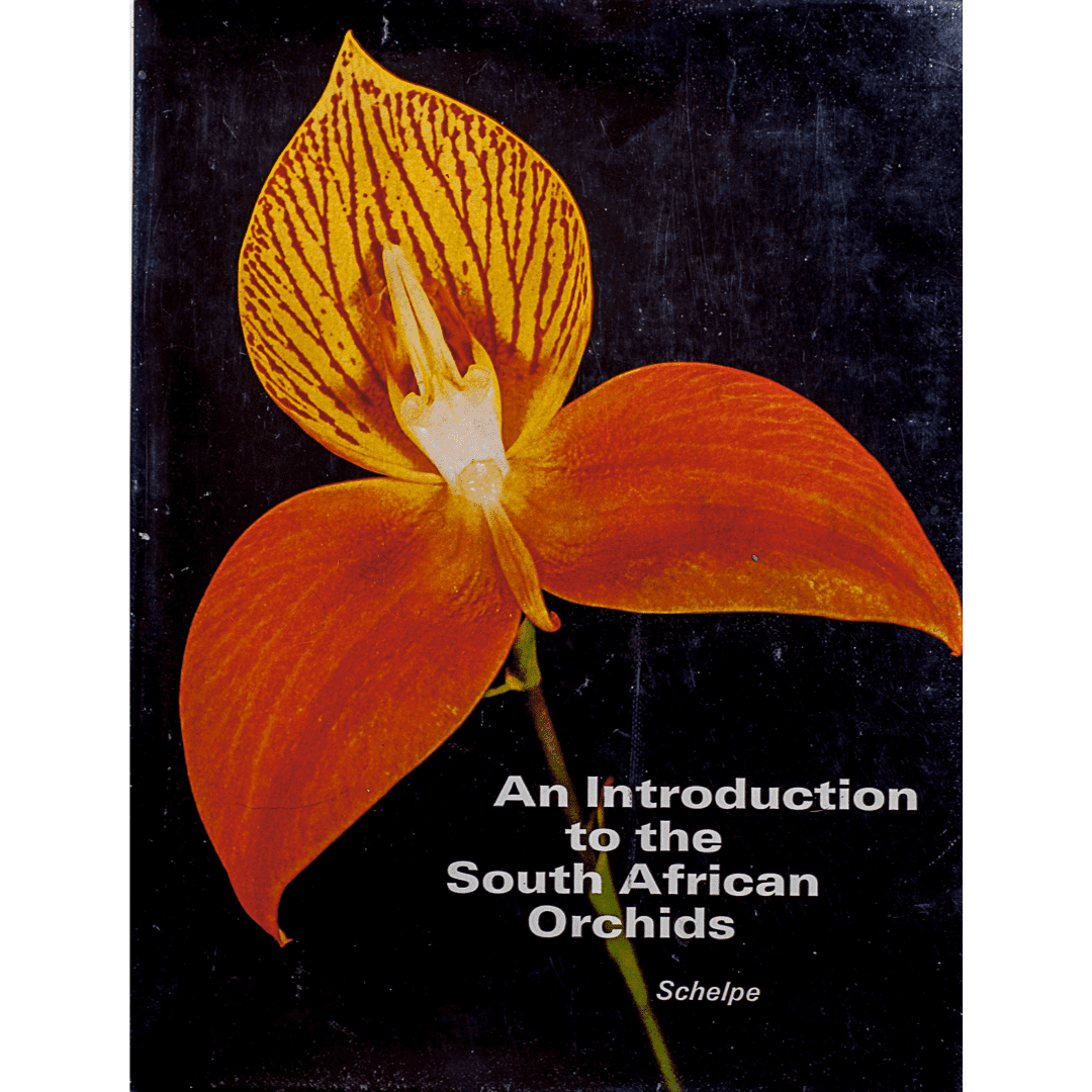 An Introduction to South African Orchids f