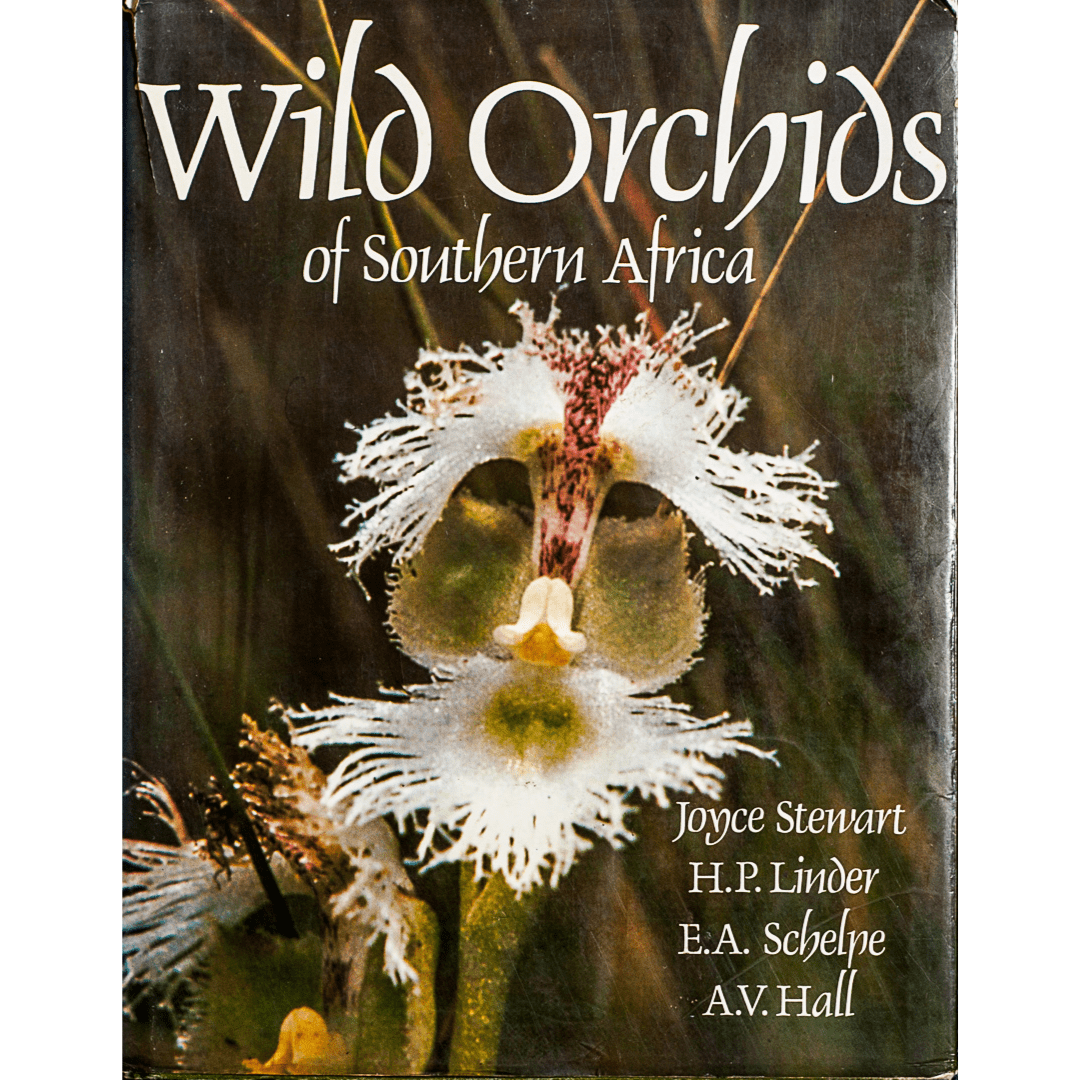 Wild Orchids of Souther Africa f